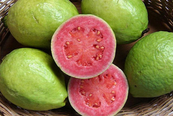 7v Guava