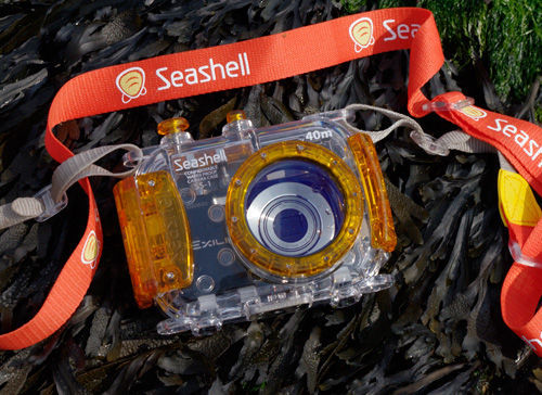 Seashell Camera Case