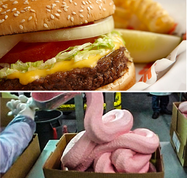 Certain hamburgers contain pink slime which is separated meat byproducts treated with ammonia 5V