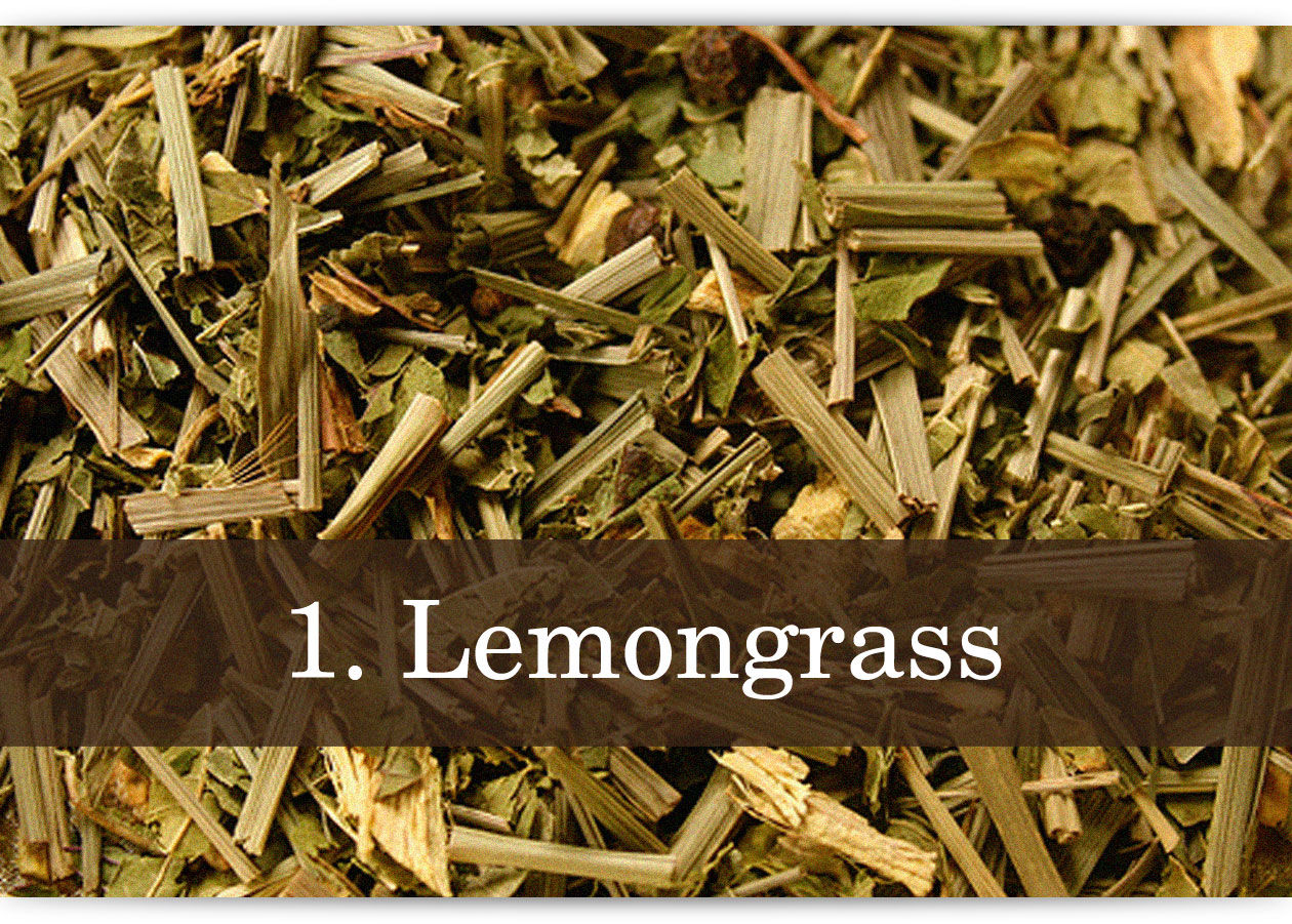 herbs-and-spices-photo-text-1