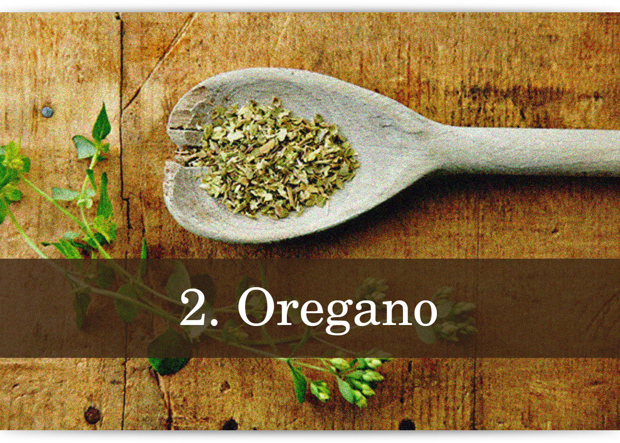 herbs-and-spices-photo-text-2