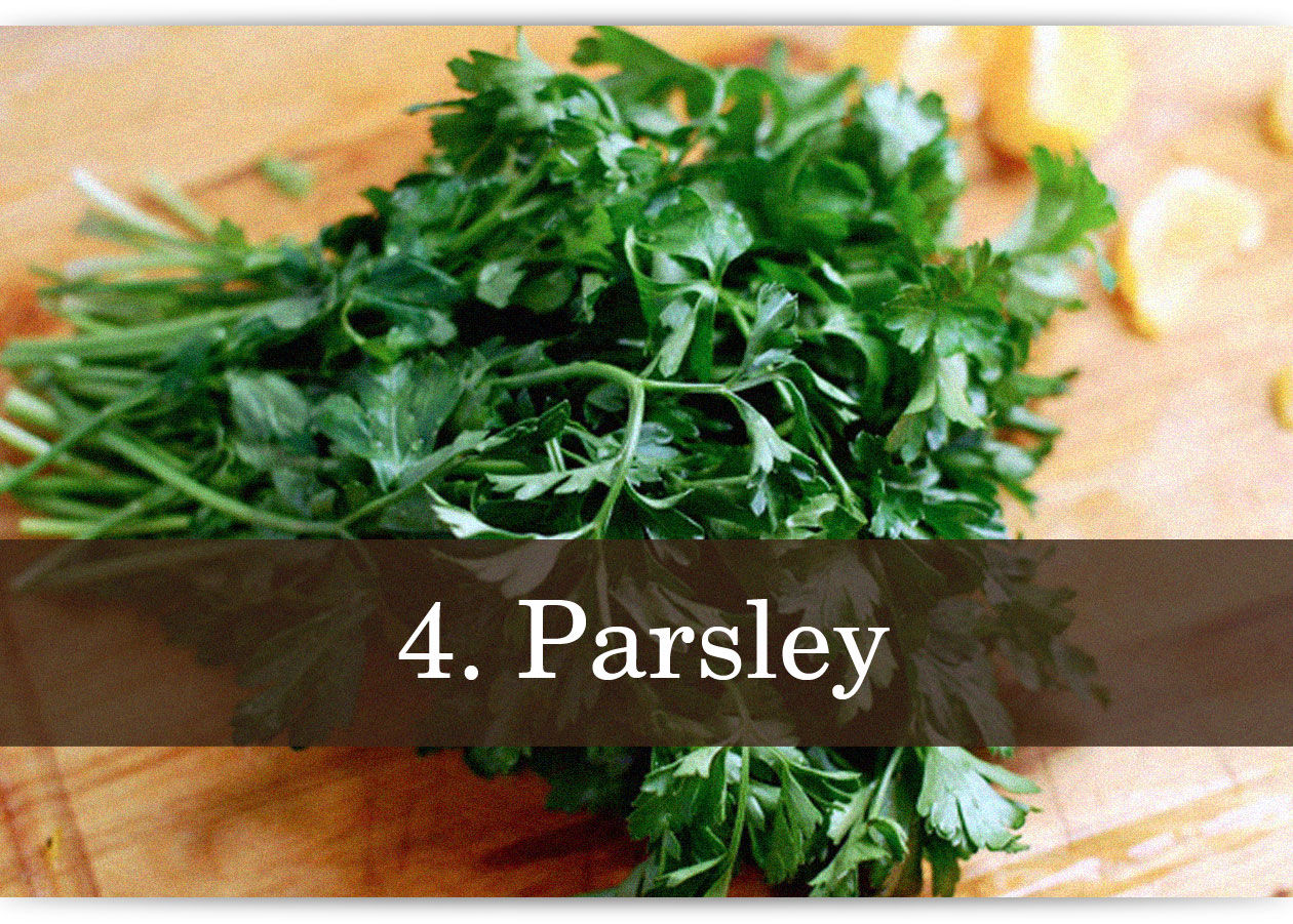 herbs-and-spices-photo-text-4