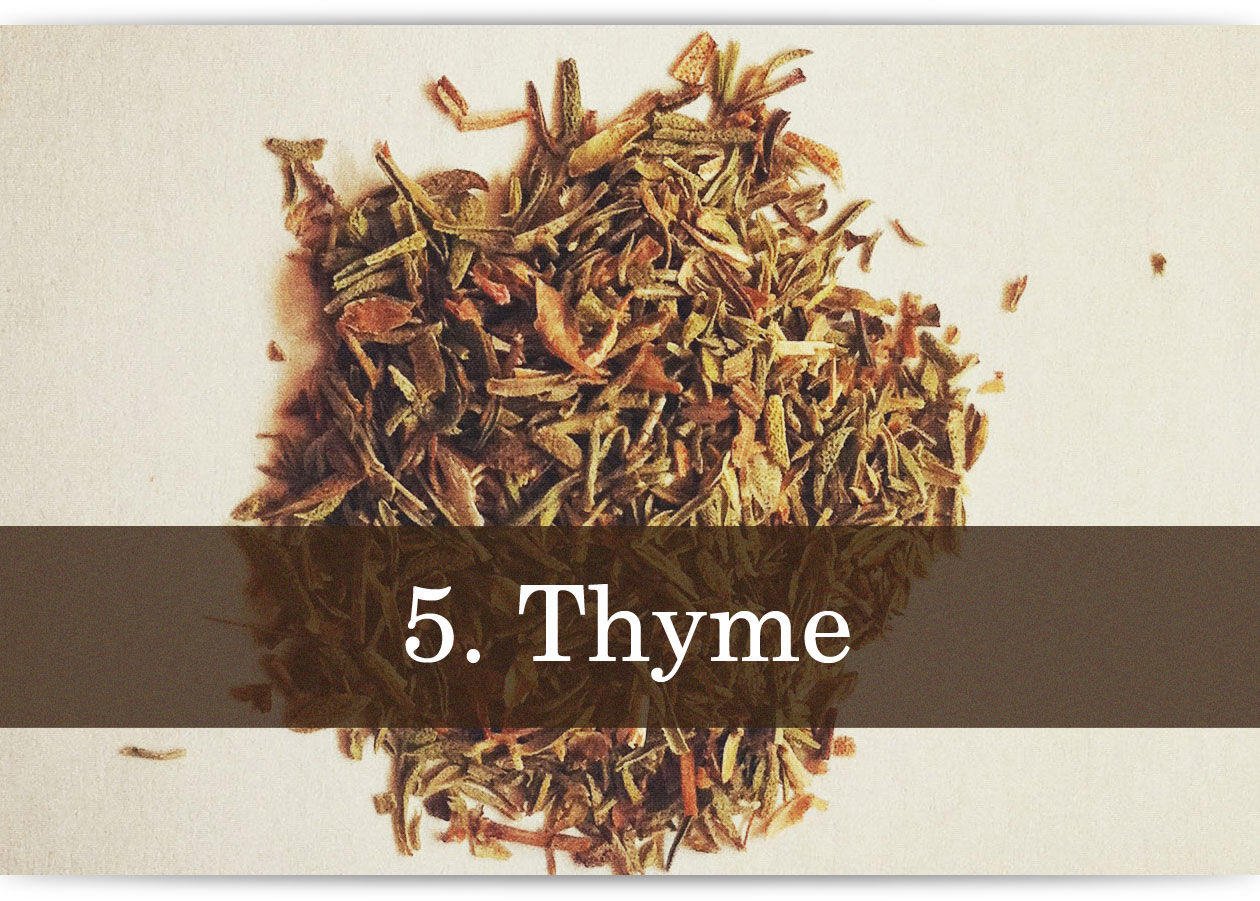 herbs-and-spices-photo-text-5