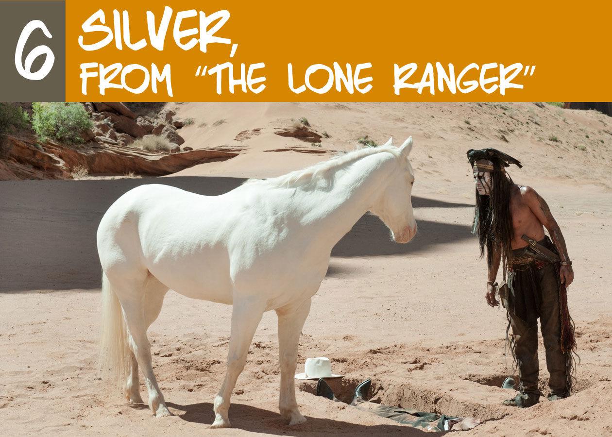 horse-kick-ass-phototext-6